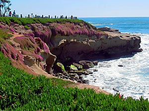 la-jolla-photography-tour